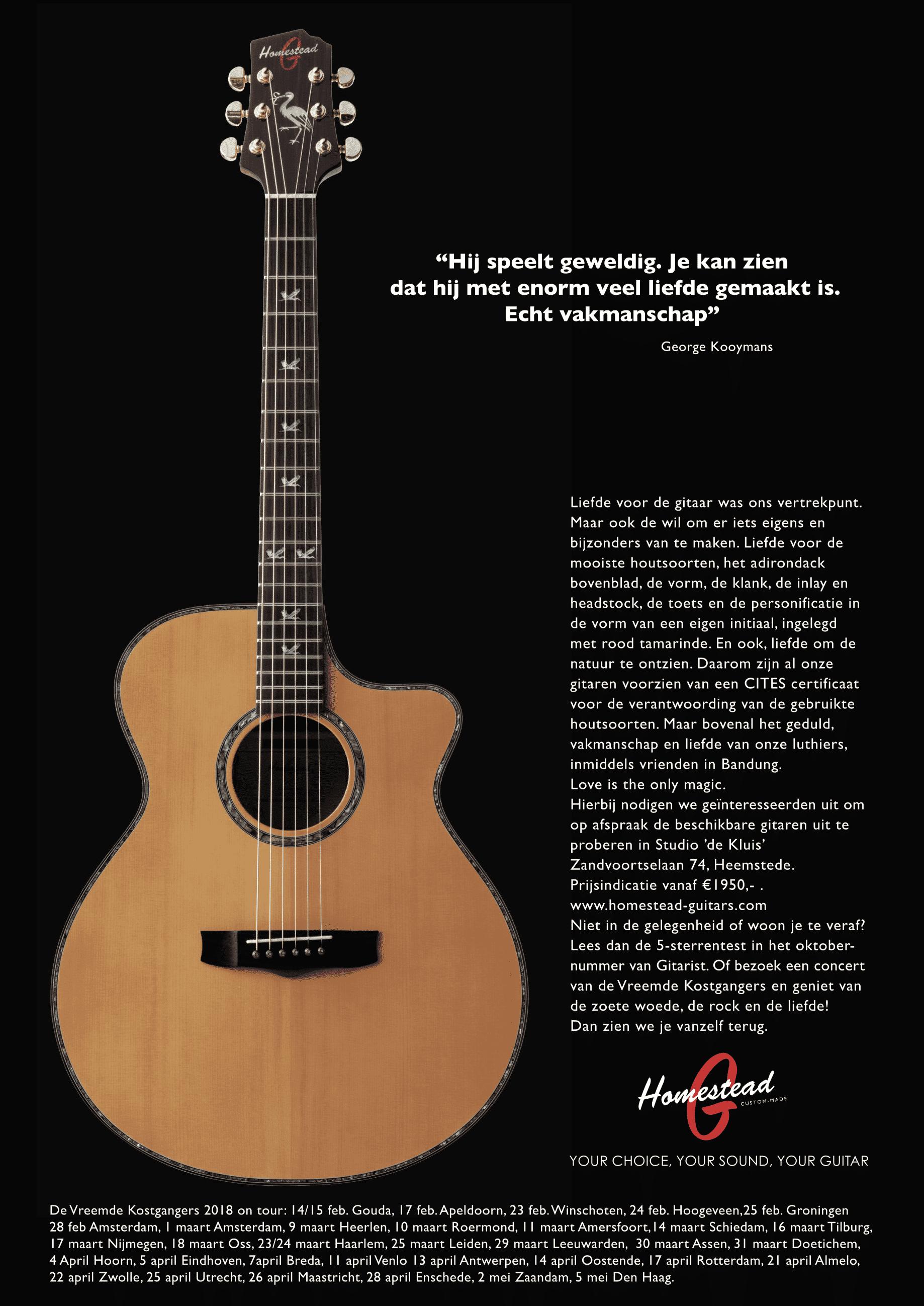 Реклама в журнале «Гитарист», ноябрь 2017 г.